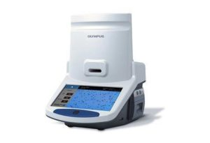 Cell Culture Solutions